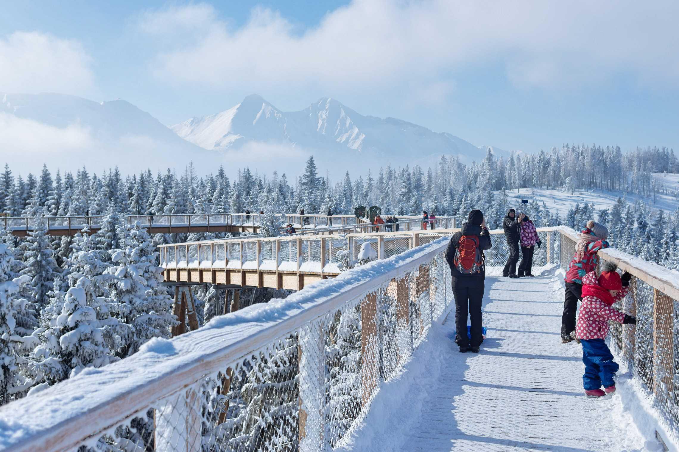 Treetop walk Bachledka | Discover the Tatras from the treetops